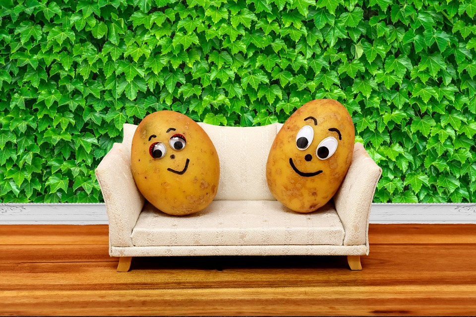 couch-potatoes-3120018_960_720